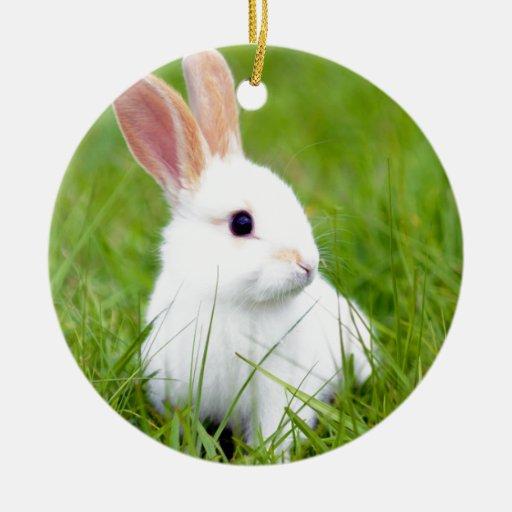 White Rabbit Ceramic Ornament Zazzle