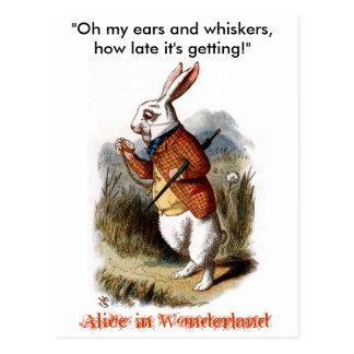 White Rabbit (color) Postcard