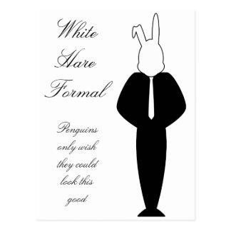 White Rabbit Design Postcard