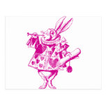 White Rabbit Herald Inked Pink Post Cards