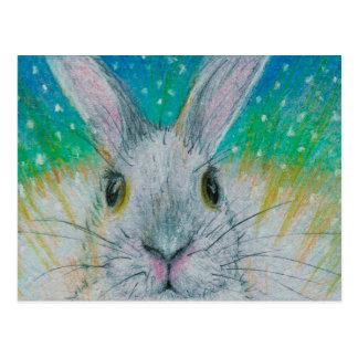 White Rabbit in the snow! Postcard