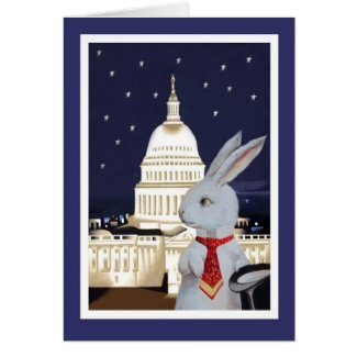 White Rabbit in Washington, DC Cards