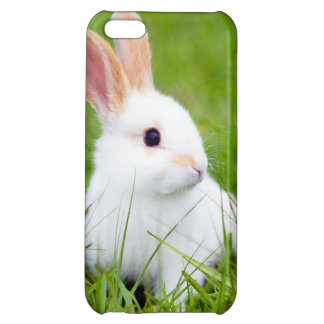 White Rabbit Cover For iPhone 5C