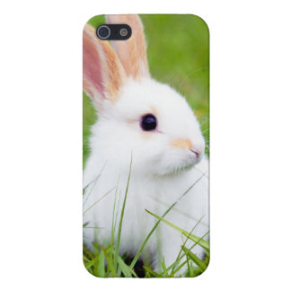 White Rabbit Case For iPhone 5