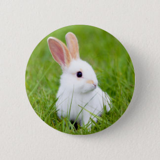 White Rabbit Pinback Button