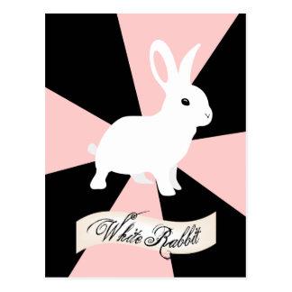White Rabbit, Pink and White Postcard