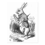 White Rabbit Post Card