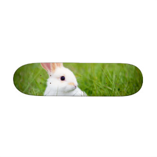 White Rabbit Skateboard
