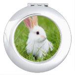 White Rabbit Travel Mirrors