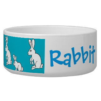 white rabbits feed/water bowl