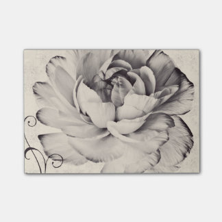 White Ranunculus Flower Black Background Post-it® Notes