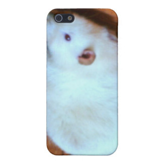 White Rat Snowball  Case For iPhone SE/5/5s