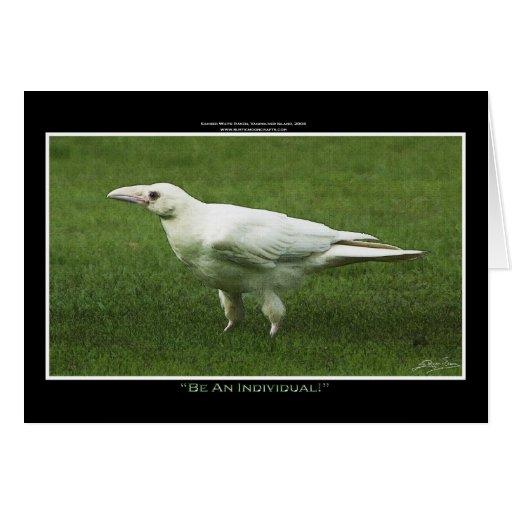 WHITE RAVEN CARD