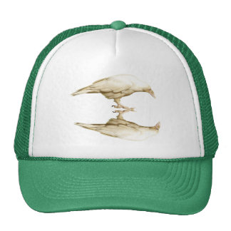 WHITE RAVEN Hat