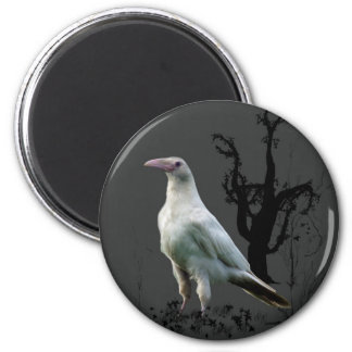 White Raven Magnets