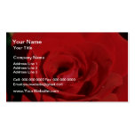 White Red velvet flowers Double-Sided Standard Business Cards (Pack Of 100)