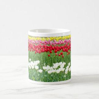 White, red & yellow tulips mugs