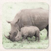 White Rhino & Baby Coasters