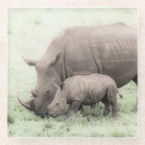 White Rhino & Baby Glass Coasters