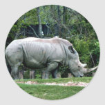 White Rhino Classic Round Sticker