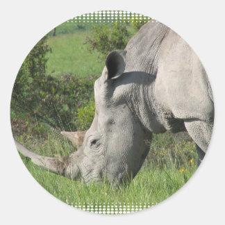 White Rhino Sticker
