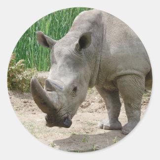 White Rhinoceros Ceratotherium Simum Classic Round Sticker