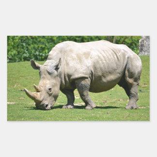 White rhinoceros grazing grass rectangular sticker