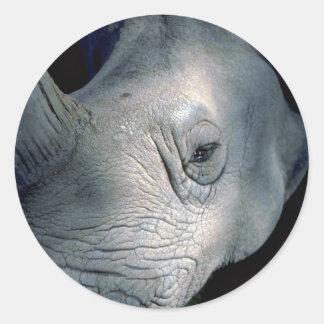 White Rhinoceros Head Stickers