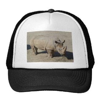 White Rhinoceros Rhino Full Body Trucker Hat