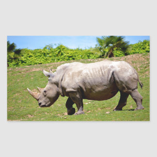 White rhinoceros walking on grass rectangular sticker