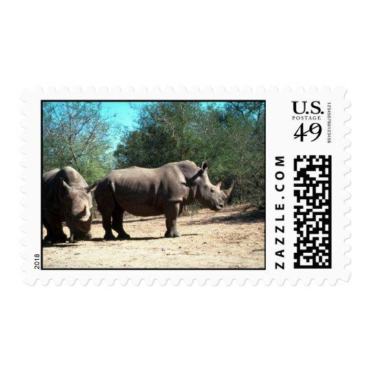 White Rhinos Postage