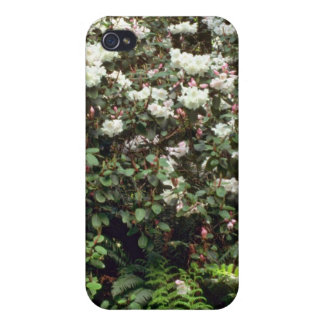 White Rhododendron Bush flowers Cases For iPhone 4