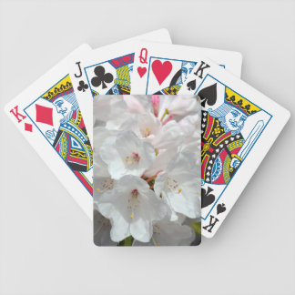 White rhododendron flowers in spring card deck