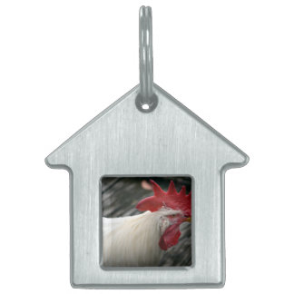 white rooster head view pet ID tag