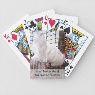 white rooster on dock bicycle playing cards