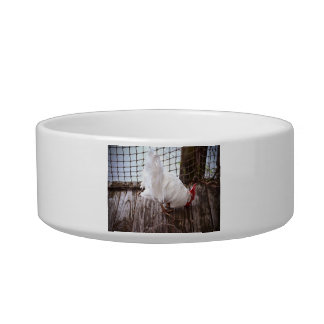 white rooster on dock cat water bowls