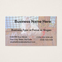 white rooster on dock hdr business card