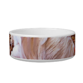 white rooster on dock hdr cat food bowls