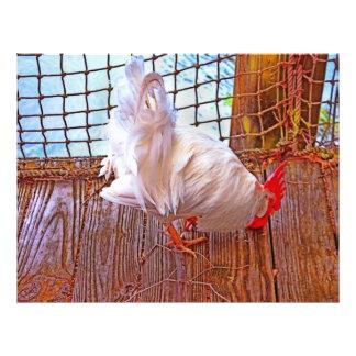 white rooster on dock hdr flyer design