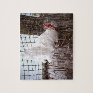 white rooster on dock jigsaw puzzle