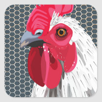 White rooster square sticker