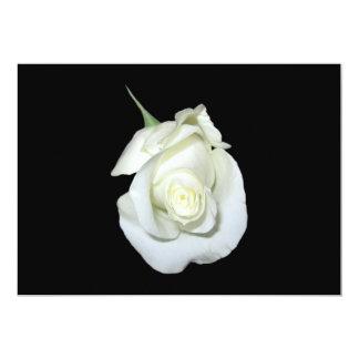 White Rose #1 5x7 Paper Invitation Card