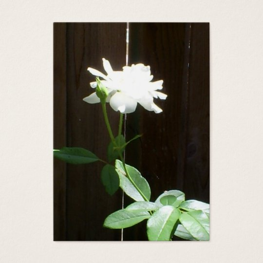 White Rose ACEO Business Card