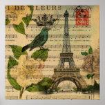 White rose birds botanical art vintage Paris Poster