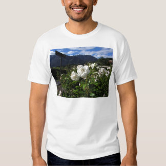 White rose blooms on a mountain background t-shirt