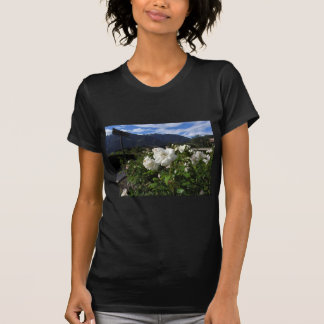 White rose blooms on a mountain background tee shirt