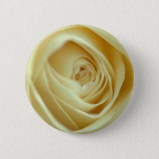 white rose blossom pinback button