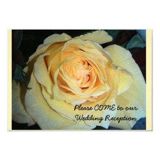 White Rose Blossom Rose Invitation R.S.V.P.
