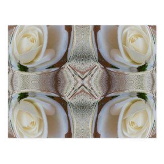 White Rose Bubbles Postcard