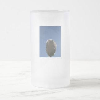 White rose bud backlit against blue sky frosted glass beer mug
